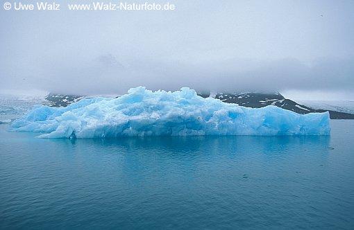 Icebergs swimming
