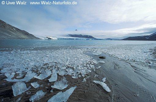 Seashore with little ice floe
