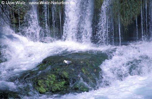 Krka Waterfall NP Krka