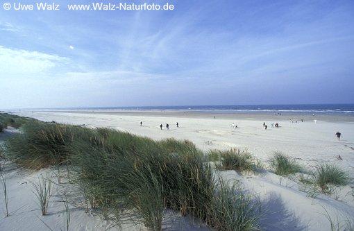 Sand dunes - Island Föhr