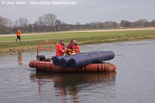 Elbe, Inundation, floding near Dannenberg