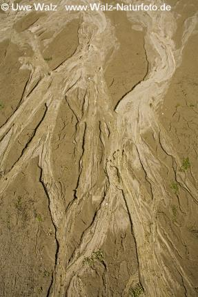 Structures in sand shore
