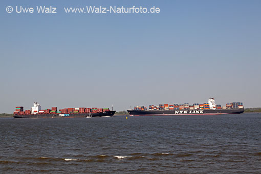 Containership NYK VESTA & ZIM USA