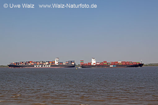 Containership NYK VESTA & ZIM USA