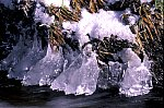 Montain Brook - Kalte Bode - Ice sculptures