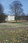 Crocus flowering time Castle Ahrensburg