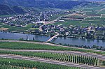 Mosel river, Piesport