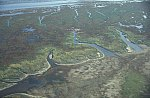 Narrow channel in the tidal marsh