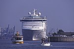 Cruise Ship Adonia in the harbour from Warnemünde
