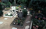 Animal cemetery