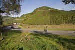 Ahr valley wine hills