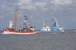 Fedderwardersiel, Crab cutters regatta, shrimp cutter regatta