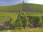 Vineyard with chapel Laurentius