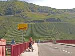 Vineyards near Trittheim, Mosel
