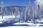 Yellowstone NP, Winter snow design