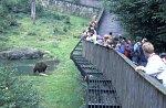 Zoological garden  NP Bayerischer Wald